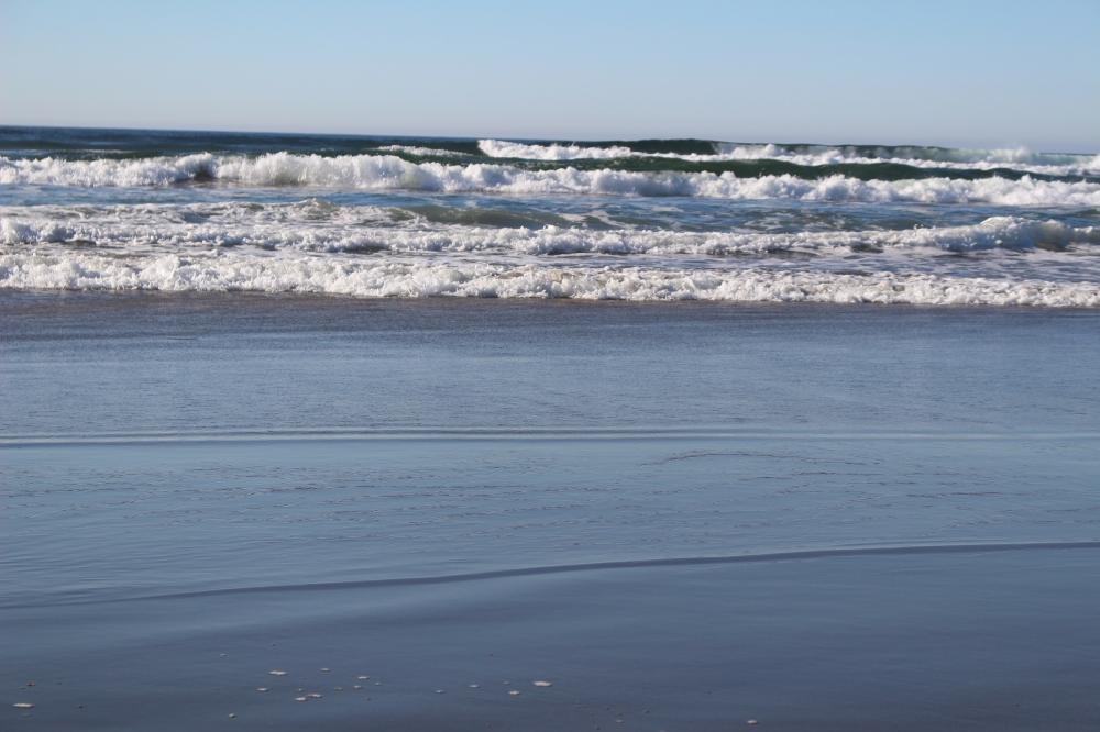 Salmon Creek Beach Bodega Bay Ca